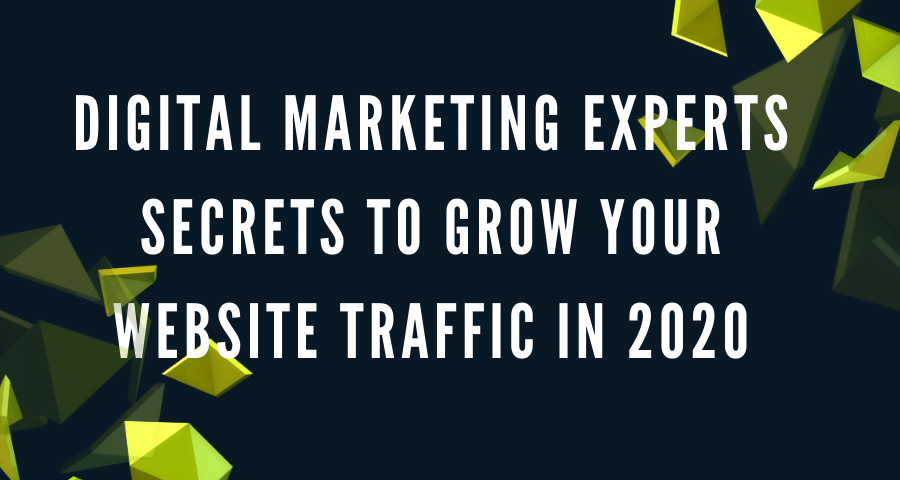 Digital Marketing Experts Secrets to Grow Your Website Traffic In 2020